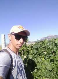 моя работа я виноградарь щас