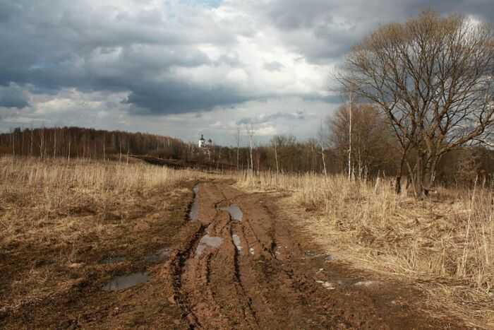 примерно такая дорога весной на поле